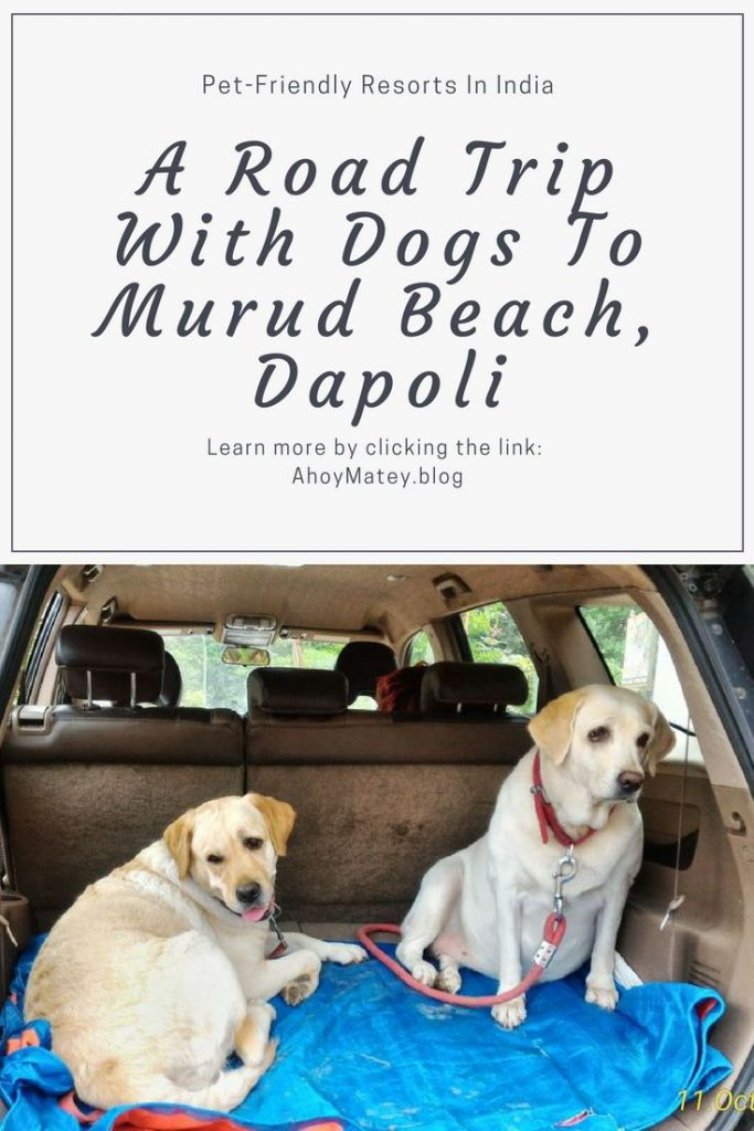 Looking for pet-friendly resorts in India? Check out this pet friendly accomodation in Dapoli and read my tips for long road trips with dogs. Share this pin and click to read more. #familytravel #travelwithkids #travelwithpets #roadtrip #travel