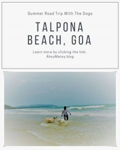 Summer Road Trip with Dogs to Talpona Beach Goa