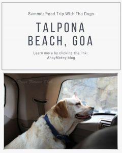Road Trip with Dogs to Talpona Beach Goa