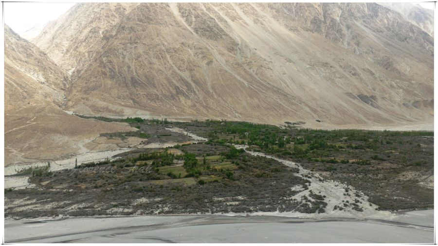 Nubra Valley or Shangri-La?