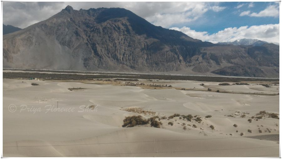 White sand dunes in Nubra Valley