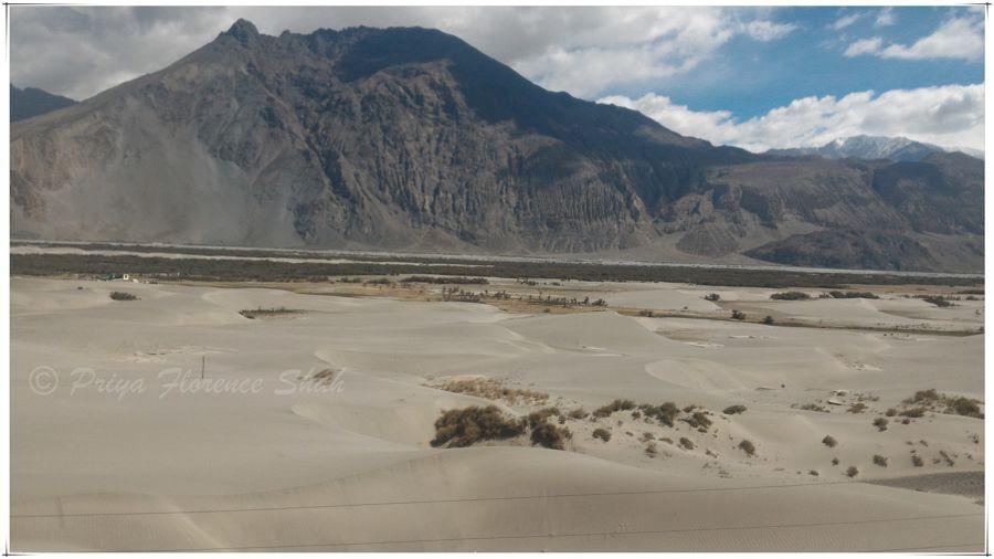 White sand dunes in Nubra Valley