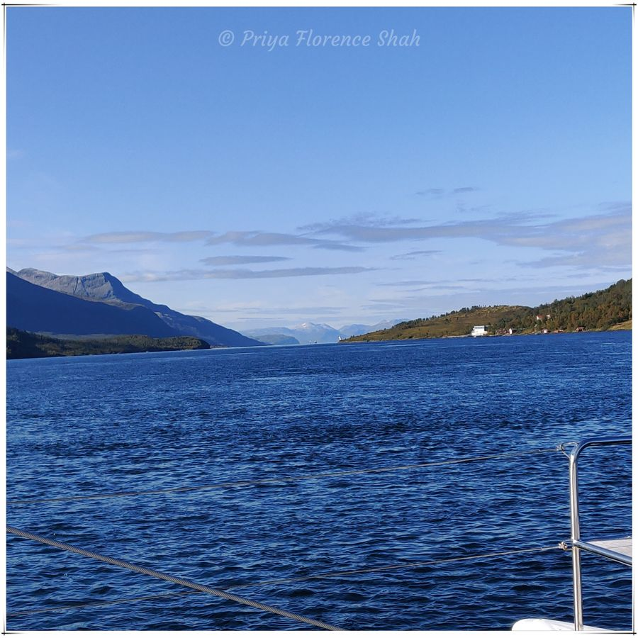Splendid views of the fjord
